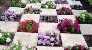 65 Creative Flower Garden Ideas