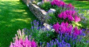 Cheap landscaping ideas for your front yard that will inspire you (6