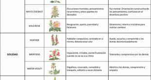 Las Flores de Bach son una terapia natural que ayudan a dar un equilibrio a la p...