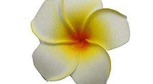 Artificial Plumeria 9Cm Plumeria Hawaiian Foam Frangipani Flower Artificial Flower for Weddin...
