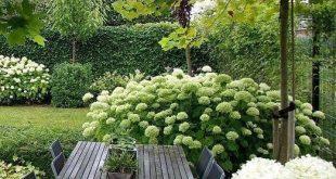 Weiße Blumengarten # ländlichen Garten # Ideen # gardendeco #gartendeco #ide # Gartenmöbel # ländlichen