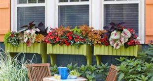 Garden decking ideas window boxes 43+ Ideas