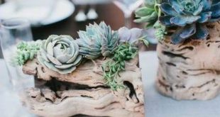 21 trendy Ideas for wedding flowers succulents centerpieces