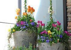 40+ Blumentöpfe für die Haustür für einen guten ersten Eindruck
