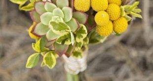70+ ideas wedding flowers succulents bouquet billy balls