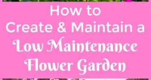 Creating & Maintaining A Low Maintenance Flower Garden