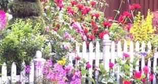 Einfache Cottage-Ideen, die Sie bauen können, um Ihr Zuhause zu ergänzen Cottage Garden Designs Design