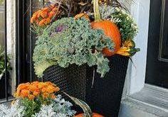 Herbst Decko