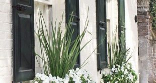 #gardening #homeimprovement #windowbox #Beautiful #window